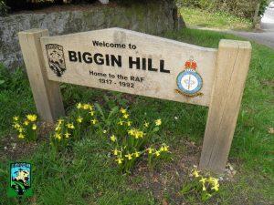 Biggin-Hill